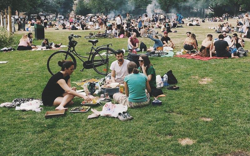 picnic in the park - Boston Summer